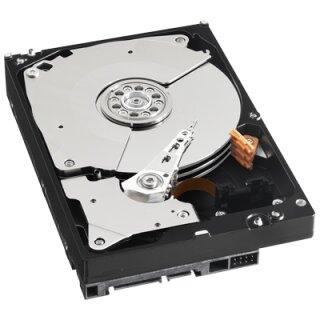 Festplatte 1000 GB 2.5 Zoll für LE800HD Nano